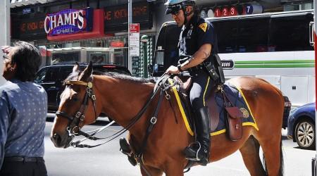 cheval-policier