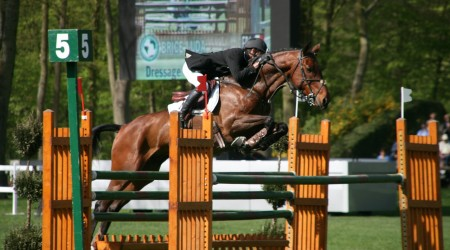 concours-obstacle-equitation